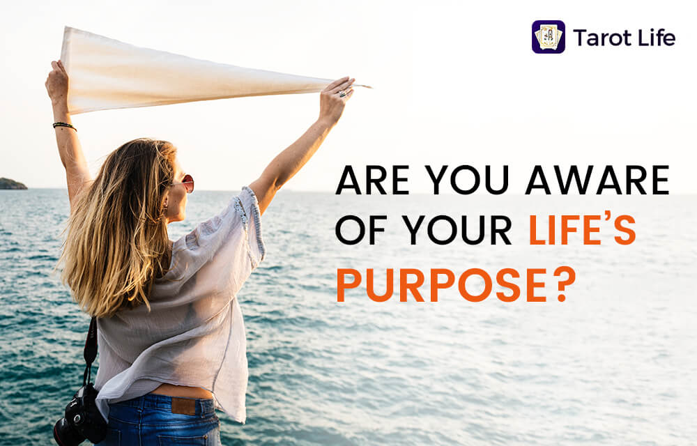 are-you-aware-of-your-lifes-purpose
